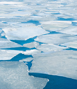 Banner: Ice sea