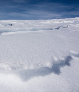 Banner: Ice snow